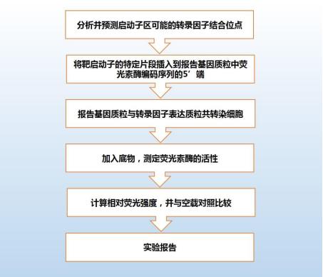 机制2.jpg
