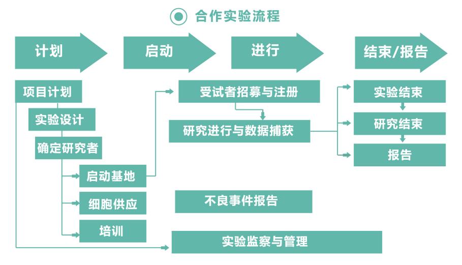合作实验流程.jpg